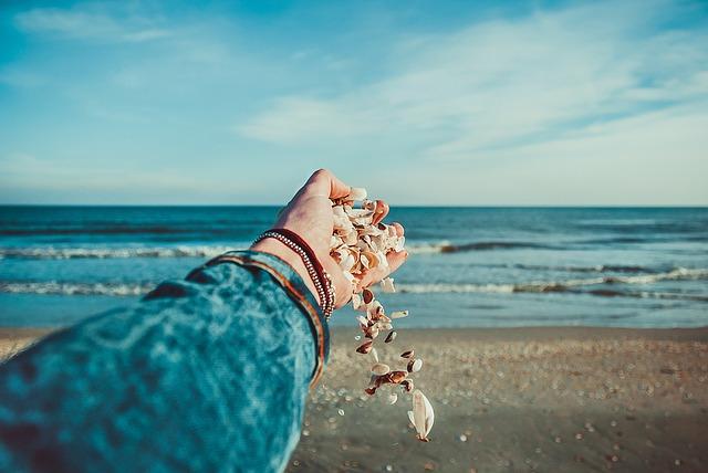 seashells-1082002_640