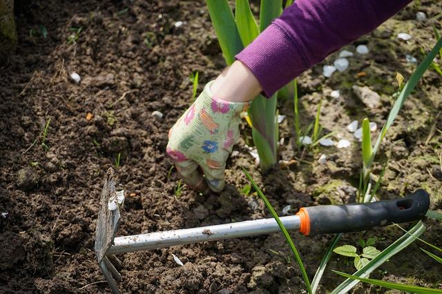 work-in-the-garden-2432111_640