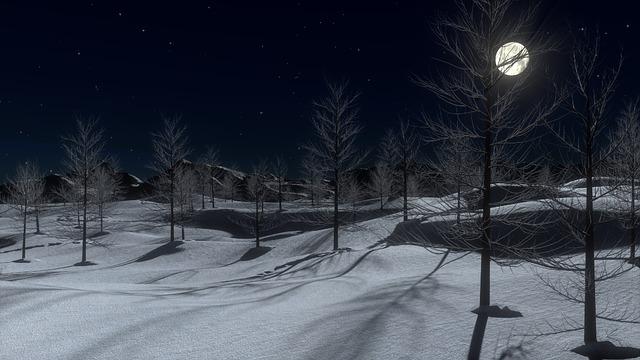 snow-642454_640