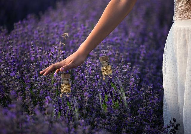 spring-4035363_640-smell